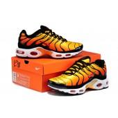 Nike TN Homme,boutique tn pas cher,vente chaude nike air max tn pas cher homme